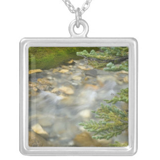 Canada, British Columbia, Yoho National Park. 4 Silver Plated Necklace