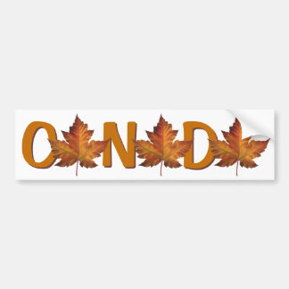 Canada Bumper Sticker Autumn Gold Maple Leaf