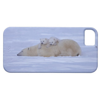 Canada Case For The iPhone 5