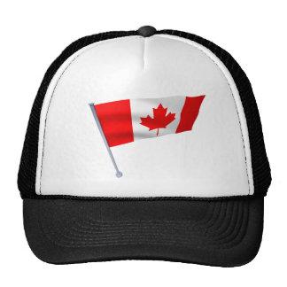Canada flag in the wind cap