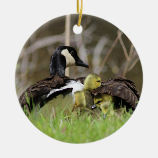 Canada Geese Family Round Ceramic Decoration