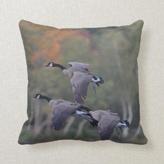 Canada Geese in Flight Cushion