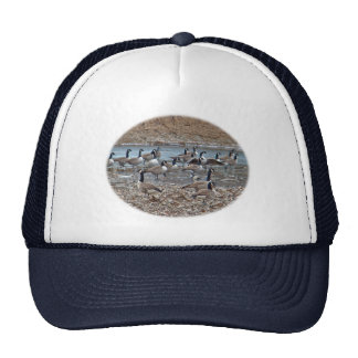 Canada Geese on Green Lane Reservoir Trucker Hat