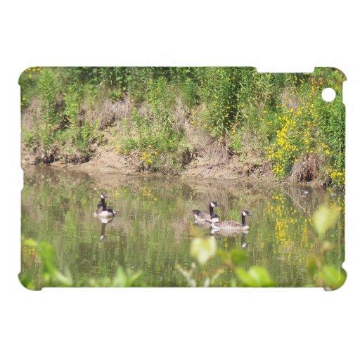 Canada Geese on Pond iPad Mini Case