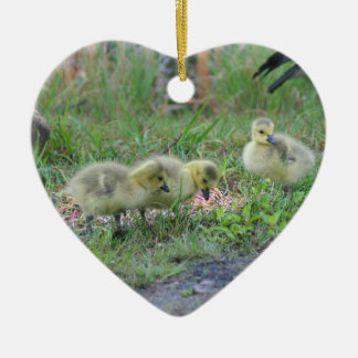 Canada Goose Babies 2 Animal Ornament