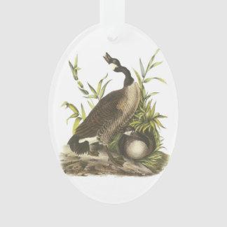 Canada Goose by Audubon Ornament
