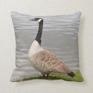 Canada Goose Cushion