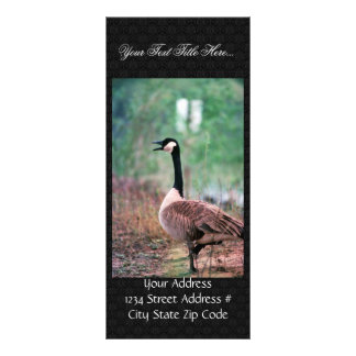 Canada goose customised rack card