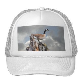 CANADA GOOSE MESH HAT