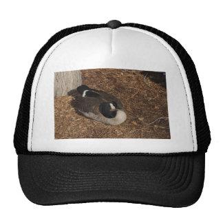 Canada Goose Trucker Hats