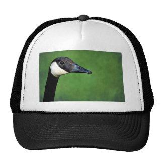 Canada goose hats