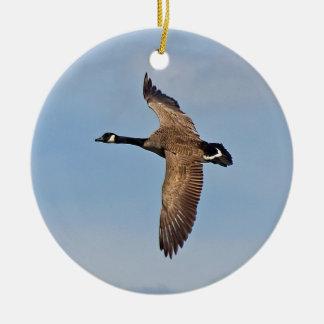 Canada Goose in Flight Round Ceramic Decoration