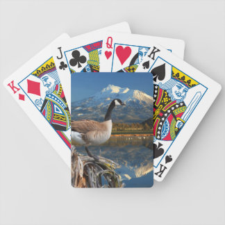 CANADA GOOSE ON THE LAKE BICYCLE PLAYING CARDS