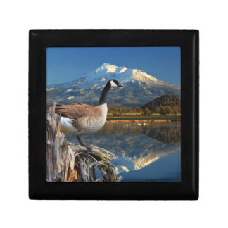 CANADA GOOSE ON THE LAKE GIFT BOX