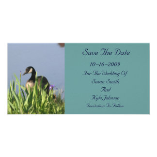 Canada Goose Painting Wedding Save The Date Picture Card