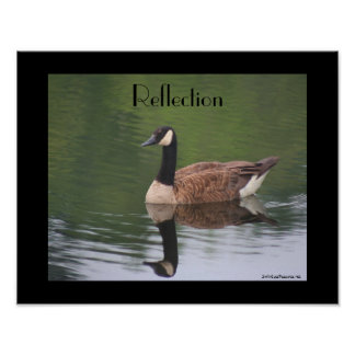Canada Goose Reflections Inspirational Poster