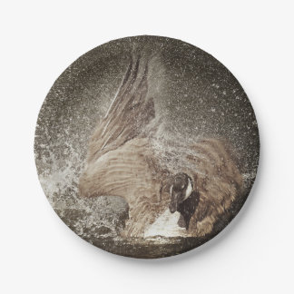 Canada Goose Slapping Water Photographic Art Paper Plate