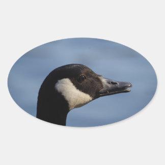 Canada Goose Stickers