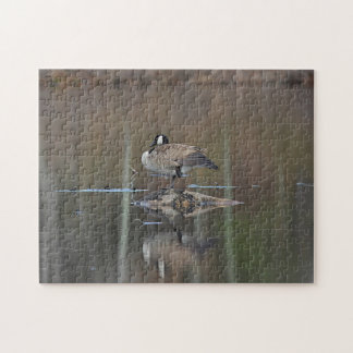 Canada goose takes a nap jigsaw puzzle