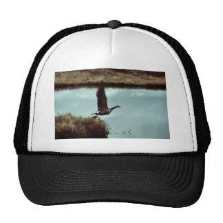 Canada Goose Taking Flight Mesh Hat