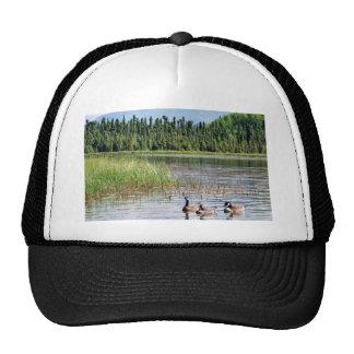 Canada goose trio on Goose Lake, Anchorage Trucker Hat