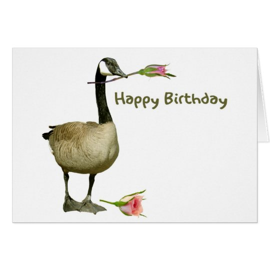 Canada goose with rose birthday card zazzle canada goose with rose birthday card bookmarktalkfo Gallery