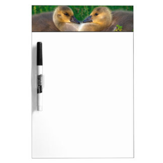 Canada Goslings that form a heart Dry Erase Board
