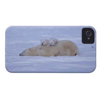 Canada iPhone 4 Cover