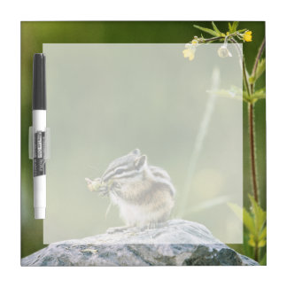 Canada, Jasper National Park, Yellow Pine Dry Erase Board