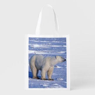 Canada, Manitoba, Churchill. Polar bear mother Reusable Grocery Bag