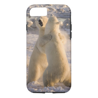 Canada, Manitoba, Hudson Bay, Churchill. 2 iPhone 8/7 Case