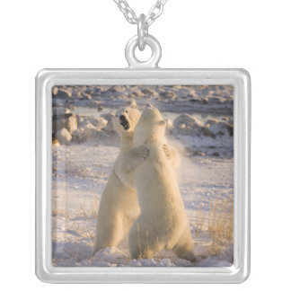 Canada, Manitoba, Hudson Bay, Churchill. 2 Silver Plated Necklace