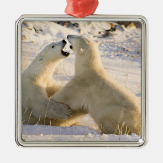 Canada, Manitoba, Hudson Bay, Churchill. 3 Christmas Ornament