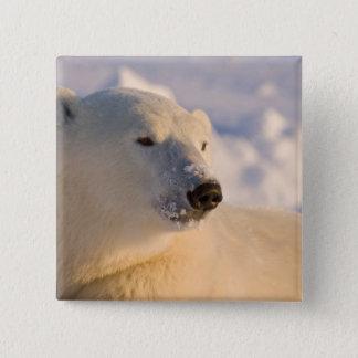 Canada, Manitoba, Hudson Bay, Churchill. 4 15 Cm Square Badge