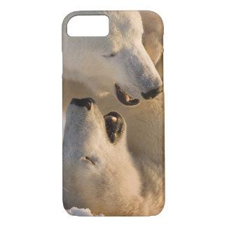 Canada, Manitoba, Hudson Bay, Churchill. 4 iPhone 8/7 Case