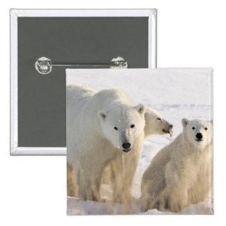 Canada, Manitoba, Hudson Bay, Churchill. 5 15 Cm Square Badge