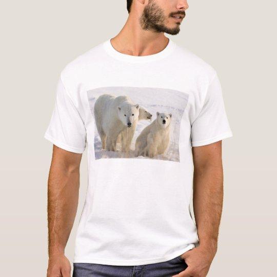 Canada, Manitoba, Hudson Bay, Churchill. 5 T-Shirt