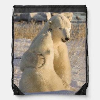 Canada, Manitoba, Hudson Bay, Churchill. Drawstring Bag