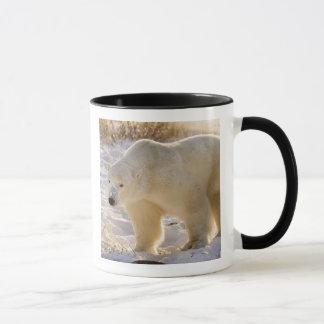 Canada, Manitoba, Hudson Bay, Churchill. Full Mug