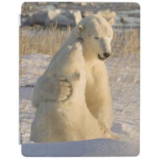Canada, Manitoba, Hudson Bay, Churchill. iPad Cover