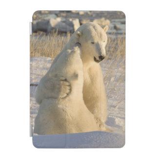 Canada, Manitoba, Hudson Bay, Churchill. iPad Mini Cover