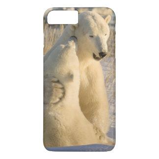 Canada, Manitoba, Hudson Bay, Churchill. iPhone 8 Plus/7 Plus Case