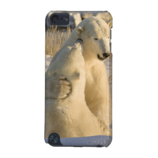 Canada, Manitoba, Hudson Bay, Churchill. iPod Touch (5th Generation) Covers