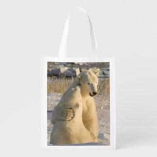 Canada, Manitoba, Hudson Bay, Churchill. Reusable Grocery Bag
