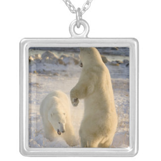 Canada, Manitoba, Hudson Bay, Churchill. Silver Plated Necklace