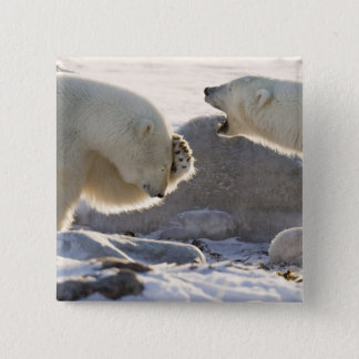 Canada, Manitoba, Hudson Bay, Churchill. Two 15 Cm Square Badge