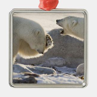 Canada, Manitoba, Hudson Bay, Churchill. Two Christmas Ornament
