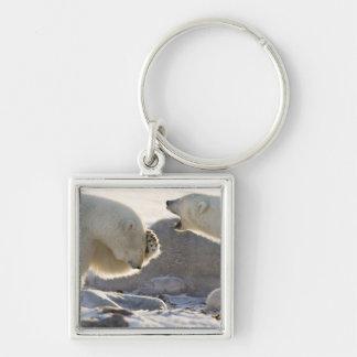Canada, Manitoba, Hudson Bay, Churchill. Two Key Ring