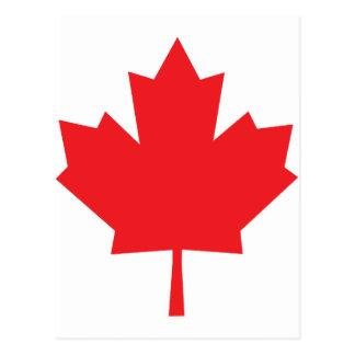 Canada Maple Leaf Canadian Symbol Postcard