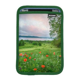 Canada, New Brunswick, ,  3 iPad Mini Sleeve